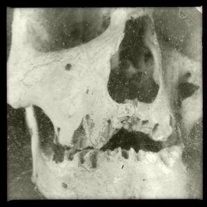 screaming skull photo