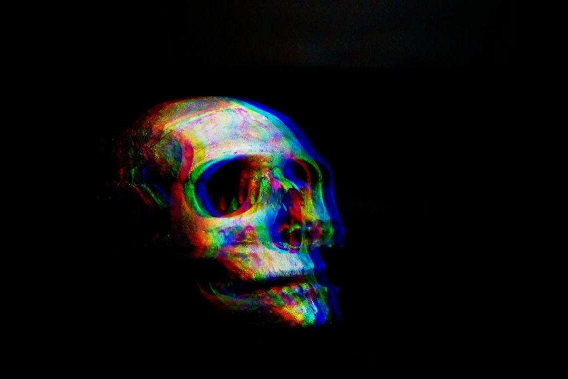 screaming skulls bettiscombe manor and burton agnes hall